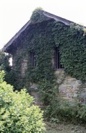Bremo, side elevation of barn with ivy