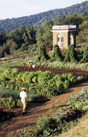 Monticello, Vegetable garden, Garden Pavilion,