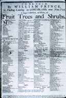 Listing for plants, trees and shrubs to be sold by William Prince