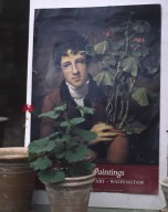Potted geranium in front of portrait of Rubens Peale with Geranium image