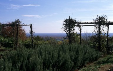 Sea view from vegetable garden