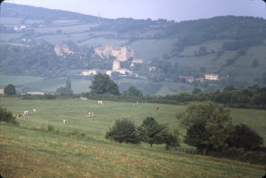 Des Moine, hills and cattle