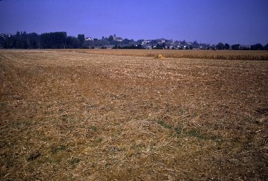 Vemanton, Environ Suxerre, cornfield, red earth