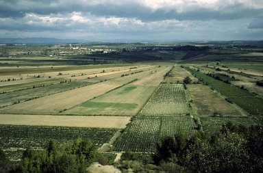 Colombiers, near Beziers, ancient farm crop pattern