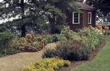 Monticello, North Pavilion and summer flowers