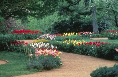Monticello, Winding Flower Walk