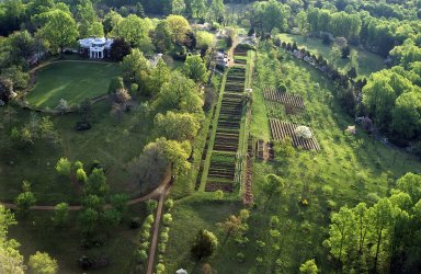 Monticello, vegetable garden and orchard