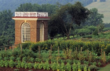 Monticello, garden pavilion and vegetable garden