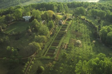 Monticello, West front and plantation