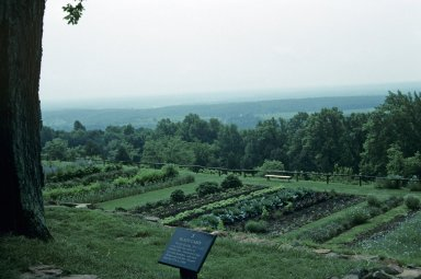 Monticello, Vegetable garden