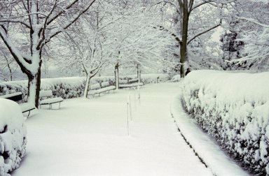 Monticello, grounds, snow