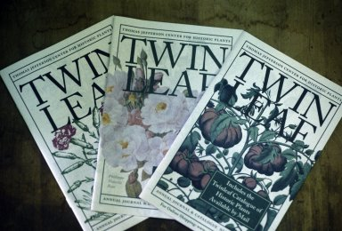 Center for Historic Plants, Twin Leaf Magazine