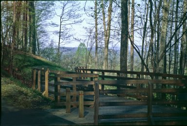 Parkway boardwalk, early spring, view to Northwest