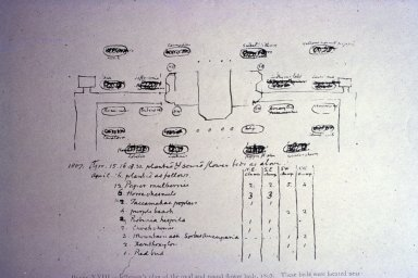 (Jefferson's 1807 plan of oval and round flower beds)