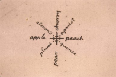 Monticello, Jefferson plan of orchard, detail