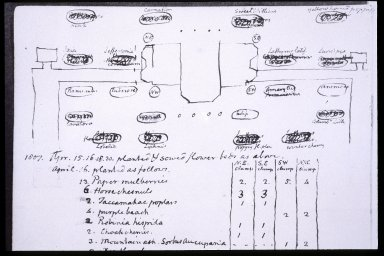 Monticello, Jefferson sketch and notes for layout of gardens