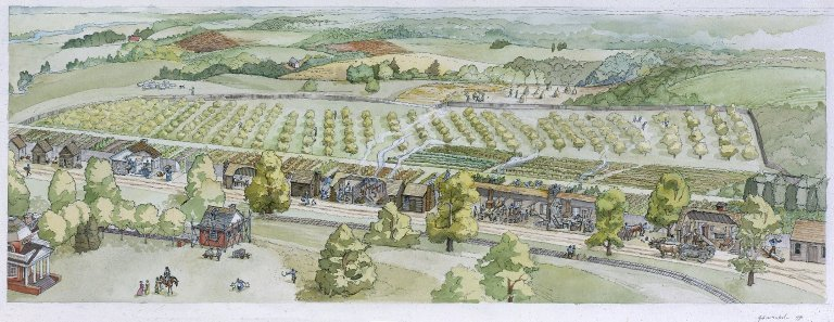 Monticello, Mulberry Row, rendering by Gail McIntosh