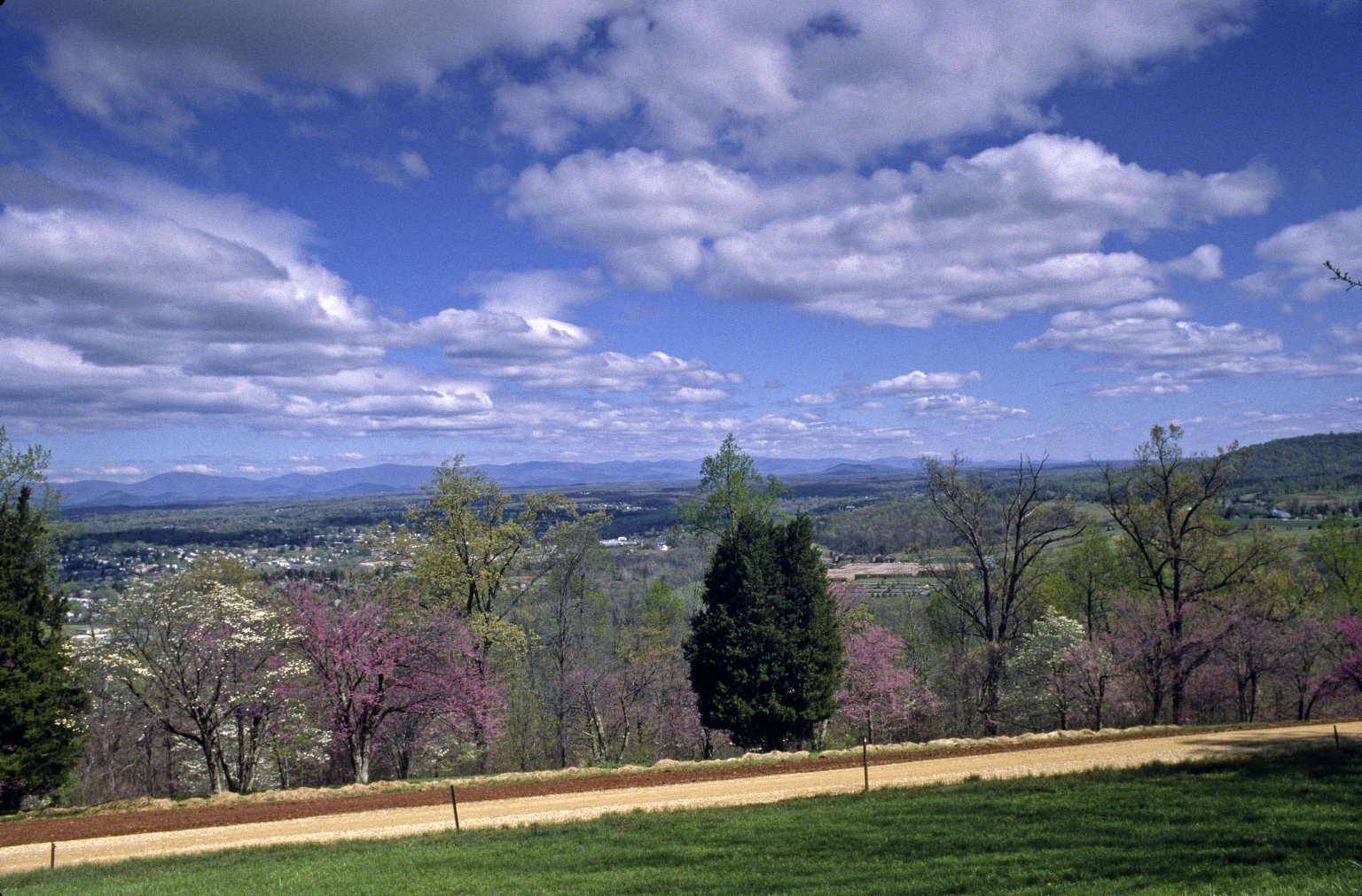 Monticello, first roundabout, view to north